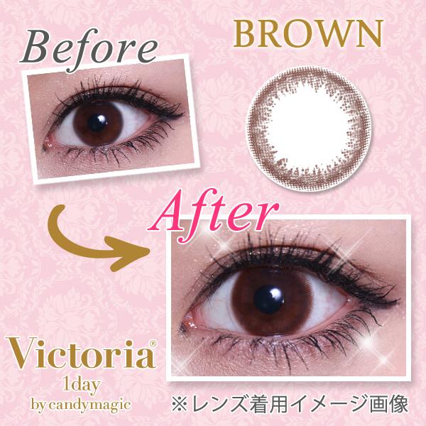 v1day-brown_1-2