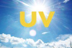 365日UVカットが必要な理由と油断しがちな場所5選